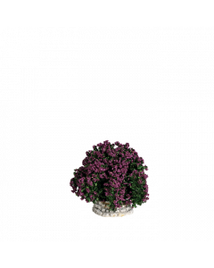 Buisson lilas - Décor