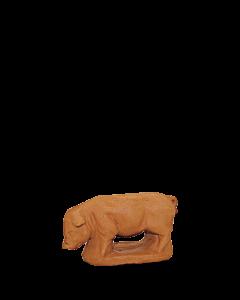 Cochon - BRUT