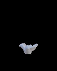 Colombe - 7CM