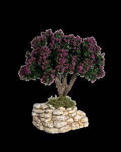 Arbre lilas - Décor